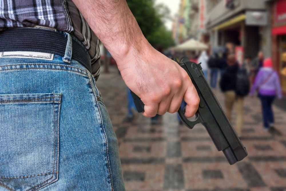 how do florida's red flag gun laws work (1)